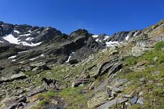 Nasco monte à la Gouille du Dragon (bulbocode909) Tags: valais suisse bourgstpierre valdentremont combedesplanards montagnes nature chiens rochers sentiers neige vert bleu paysages