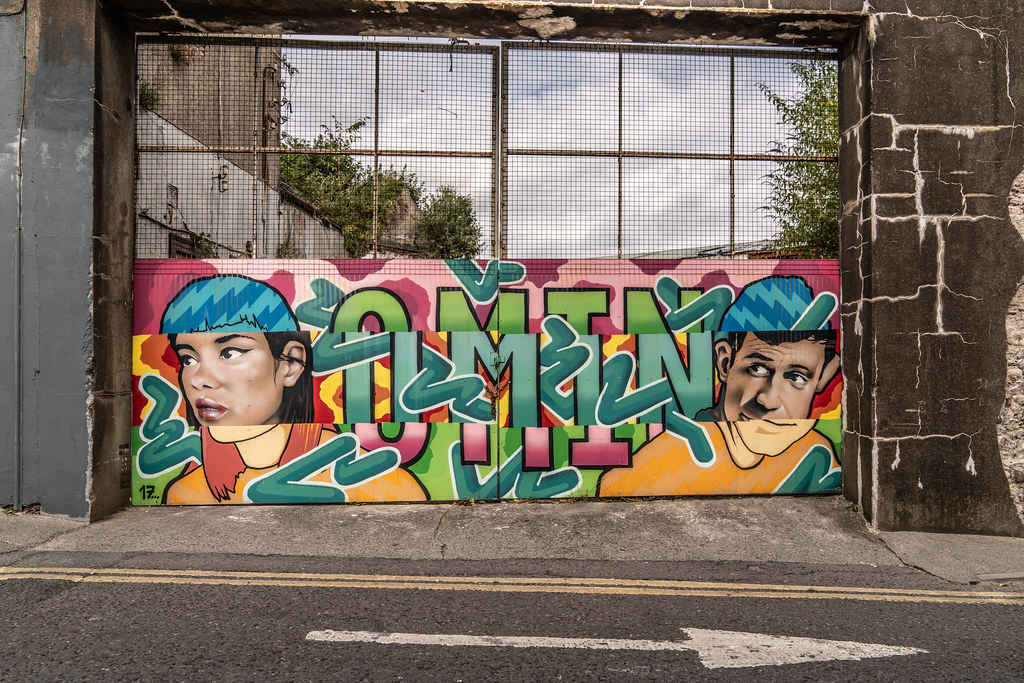 EXAMPLES OF STREET ART [URBAN CULTURE IN WATERFORD CITY]-142268