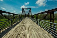 Moore's Crossing Bridge (Will Swinnea) Tags: austintexas richardmoyapark moorescrossingbridge onioncreek path colorful sunshine bridgeatmoorescrossing bridge shadow shadows texas centraltexas austin fineart natur outdoors nikkor dof richardmoyaparkaustintexas park