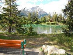 Taking a Break .... (Mr. Happy Face - Peace :)) Tags: banff alberta canada art2018 emptyseat bench forest bowriver rockies albertabound naturewalk summer