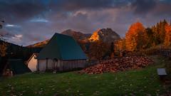 Durmitor (Leonardo Đogaš) Tags: durmitor crnagora autumn morninglight montenegro jesen bojejeseni pejzaž landscape sky međed leonardođogaš grass žabljak