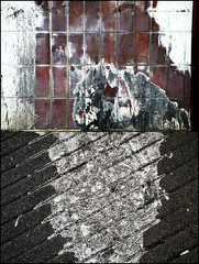 Magnetiologies 04 (onesecbeforethedub) Tags: vilem flusser onesecbeforetheend onesecbeforethedub onesecaftertheend abstract abstraction decay details mundane paint glass ground signs rust