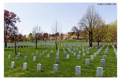 "Memorial <a style=""margin-left:10px; font-size:0.8em;"" href=""http://www.flickr.com/photos/66444177@N04/28819166967/"" target=""_blank"">@flickr</a>"