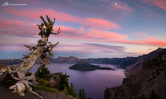 Sunset on the Crater (Matt Straite Photography) Tags: crater lake water national nationalpark tree wizard isaland canon tripod sun sunset color pink reflection landscape sky clouds cloud craterlake