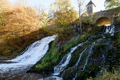 _DSC0021.jpg (wim_tavernier) Tags: coo wallonia waterfall belgium liège ardennes europe fall stavelot ardennen autumn wallonie wallonië automne herfst belgië be