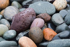 Simple Beauty (Rebecca Leyva) Tags: relaxing zen background hues texture summer eastcoast orange purple colorful smooth beautiful westquoddyhead lubec maine rocky sea beach shore ocean rock rocks