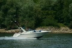 Wassersport (Lutz Blohm) Tags: sportboote speedboot rhein rheinschifffahrt kiefweiher wassersport binnenschifffahrt sonyfe70300goss sonyalpha7aiii fluskilometer418 mannheim