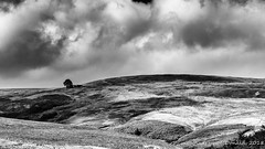 Towards Top Withens, Yorkshire (Andy McDonald) Tags: trees sky moors yorkshire monochrome blackwhite clouds