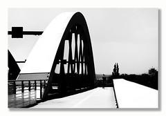 away home (ddaugenblick) Tags: sw bw dresden waldschlösschenbrücke scherenschnitt brücke bridge architektur