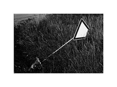 no_rules_2 (Marek Pupák) Tags: monochrome rangefinder ilford blackandwhite bw documentary country slovakia slovensko no rules leica street yield road blackandwhitephotography documentaryphotography