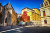 Autumn in Grenoble, France (` Toshio ') Tags: toshio grenoble france french europe european europeanunion city square fall autumn tree leaves people fujixt2 xt2