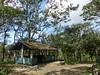 P1050899 (toonflick) Tags: sri lanka tea kandy colombo marissa blue whales elephants monkeys temples buddhism sinhalese ceylon