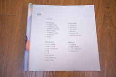 YUI 画像13