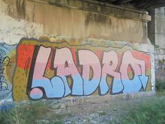 015 (en-ri) Tags: ladro rosa azzurro nero arancione marrone genova zena wall muro graffiti writing