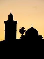 Sadiki College Silouette (andryn2006) Tags: tunis tunisia medina tn