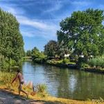 Hottest day, Swimming, Kromme Rijn, Bunnik, Netherlands - 1574 thumbnail