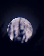 Moon Rise (Desmojosh) Tags: canon 70d medford new jersey atsion lake nj celestron 90az f9 1000mm moon rise 93 night exposure long time