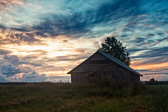 Late Summer Sunset (k009034) Tags: 500px wooden copy space finland rural scene scandinavia tranquil agriculture barn house birch building clouds dramatic sky evening farming fields landscape nature no people old serenity summer sunset trees sun horizon over land dusk scenics cloud idyllic teamcanon copyspace ruralscene tranquilscene barnhouse dramaticsky nopeople