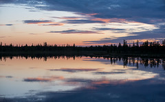 Reflection (Andrey Snegirev) Tags: sunset summer nature siberia russia lake water reflection amazing beautiful