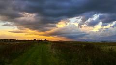 Burwell Fen, Cambridgeshire (andyh866) Tags: cambridgeshire burwellfen