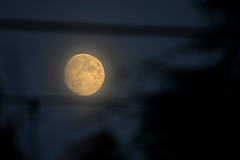 Misty moon (PentlandPirate of the North) Tags: full moon mist