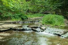_Q0A1563 (sbirmingham) Tags: landscape nature outdoors waterfall castile newyork unitedstates us
