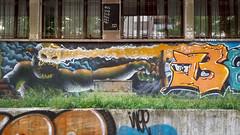 The streets of Tirana (Leaning Ladder) Tags: tirana albania graffiti streetart mural leaningladder