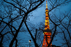 Tokyo tower|東京鐵塔 (里卡豆) Tags: penf 17mm f12 pro olympus17mmf12pro olympus 日本 關東 tokyo 東京