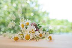 Fiori di campo (mariateresa toledo) Tags: fioridicampo wildflowers bouquet bokeh sonya7riii distagontfe1435 mariateresatoledo dsc03142