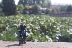 Just another mission (AlexSnake) Tags: odst outdoor lego halo custom