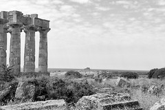 The Greek Ruins of Selinunte (virtualwayfarer) Tags: marinella sicilia italy it selinunte greek greekruin ruin city greekcity roman romancity ruins ancientworld selinous sicily italian sicilian temple templeofhera greekcolony hellenistic architecture spring roadtrip seaside archaeologicalruin archaeologicalsite acropolis necropoleis pillars columns greekcollumns history alexberger europe european travelphotography travelblogger explore exploring visitsicily visittosicily westernsicily sonyalpha a7rii