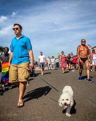20180804-IMG_1541 Hot dog and men (susi luard 2012) Tags: brighton pride dog man people uk
