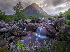 Glencoe - Buachaille Etive Mor (grahamwilliamson1985) Tags: glencoe grahamwilliamson waterfall munro hill bloom heather bluebell scotland landscapephotography landscape nopeople water scottishhighlands