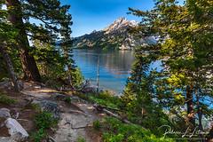 Jenny Lake Scenery (rebeccalatsonphotography) Tags: jennylake grandteton grandtetons np nationalpark landscape scenery mountains canon lake water forest trees wy wyoming rebeccalatsonphotography