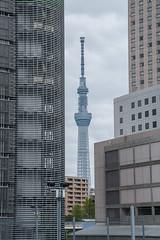 Tokyo Sky Tree (atsubor) Tags: 日本 東京 tokyo japan towers tvtower skyscraper
