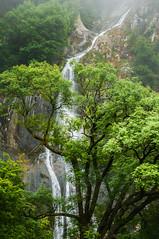 Falls of Time (Einir Wyn Leigh) Tags: landscape trees foliage waterfall wales nikon green countryside uk water mist