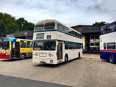 West Bromwich 101 (DOC26V) Tags: nea101f preservedbus westmidlandstravel wmpte fleetline westbromwich 101 wythall