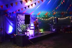DSC_0176 (richardclarkephotos) Tags: trowbridge festival stowford farm wiltshire uk farleigh hungerford richard clarke photos richardclarkephotos © manor child dog people friendly live event