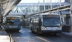 Airport buses (Loops666) Tags: bus montreal quebec vehicle transportation publictransit airport