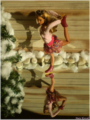 A-Z Challenge 2.0: R - Reflection (Mary (Mária)) Tags: reflection doll barbie holiday barbieholiday iceskating iceskates nature winter snow azchallenge az dollphotography dollphotographer dollcollector tree hispanic toys fashion fashiondollphotography fashiondoll fashionistas handmade marykorcek