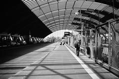 terminal (gato-gato-gato) Tags: 35mm asph amsterdam europa europe ferien holland iso400 ilford ls600 leica leicamp leicasummiluxm35mmf14 leicasummiluxm50mmf14asph mp messsucher nl netherlands noritsu noritsuls600 strasse street streetphotographer streetphotography streettogs summilux wetzlar adventure analog analogphotography aspherical believeinfilm black classic film filmisnotdead filmphotography flickr gatogatogato gatogatogatoch holidays homedeveloped manual mechanicalperfection rangefinder streetphoto streetpic tobiasgaulkech travel trip white wwwgatogatogatoch noordholland niederlande manualfocus manuellerfokus manualmode schwarz weiss bw blanco negro monochrom monochrome blanc noir strase onthestreets