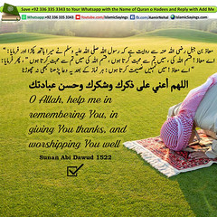 help-me-in-remembering-You (aamirnehal) Tags: quran hadees hadith seerat prophet jesus moses book aamir nehal love peace quotes allah muhammad islam zakat hajj flower gift sin virtue punish punishment teaching brotherhood parents respect equality knowledge verse day judgement muslim majah dawud iman deen about son daughter brother sister hadithabout quranabout islamabout riba toheed namaz roza islamic sayings dua supplications invoke tooba forgive forgiveness mother father pray prayer tableegh jihad recite scholar bukhari tirmadhi