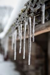 IMG_6566 (janjančík) Tags: stockholm winter travel