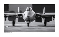 Nifty Noggie (Mike Palmer Fauxtography) Tags: dehavilland vampire fb6 lndhy vz305 norwegian historical squadron luftforsvaret riat royal international air tattoo raf fairford gloucestershire jet fighter military aircraft aeroplane airplane aviation mono monochrome bw michaelpalmer fauxtography canon eos 7d ef300mm f28l is usm haze jelly runway noggie