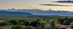 Serra do Araripe (ruifo) Tags: nikon d810 nikkor afs 24120mm f4g ed vr roadtrip road trip ceara ceará brasil brazil sertao sertão nordeste ne landscape paisagem paisaje montanha serra mountain montaña chapada araripe cariri barbalha ce