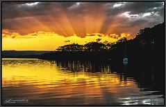 Bright Sunset (itsallgoodamanda) Tags: amandarainphotography australia australianlandscape australiassouthcoast winter2018 shoalhaven seascape sea southcoast seaside sunset seascapephotography sky sanctuarypoint sunsetphotography jervisbayphotography jervisbay beautifulsunset silhouettetrees ocean landscape landscapecoast newsouthwales colourfullandscape colourfulsunset skyreflections clouds cloudreflections stgeorgesbasin sunrays boat calmocean calmwater itsallgoodamanda photography photoborder peaceful prettysunset coastallandscape coastal coastline coast paradisebeach australianphotography oceansunset