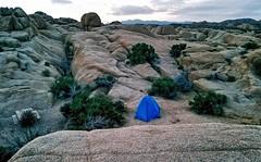 Jumbo Rocks Campground- Joshua Tree National Park- Riverside County CA  (3) (kevystew) Tags: california riversidecounty joshuatree nationalpark camping campground jumborocks