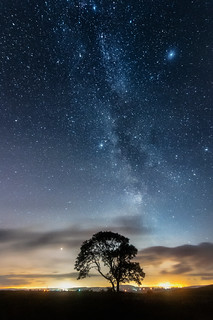 Milky Way & the Lonely Tree on the Limestone Pavement