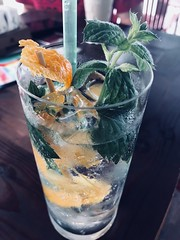 Gin and tonic with mint and orange (ivona eriuivona) Tags: drink orange mint ginandtonic tonic gin cocktail