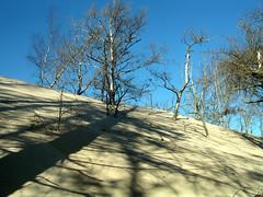 L'avanzata delle dune (fpini) Tags: park sand europa dune poland picturesque polonia pomerania gmt slowinski baltico